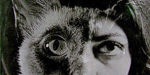 Persona -- Som (1975)
