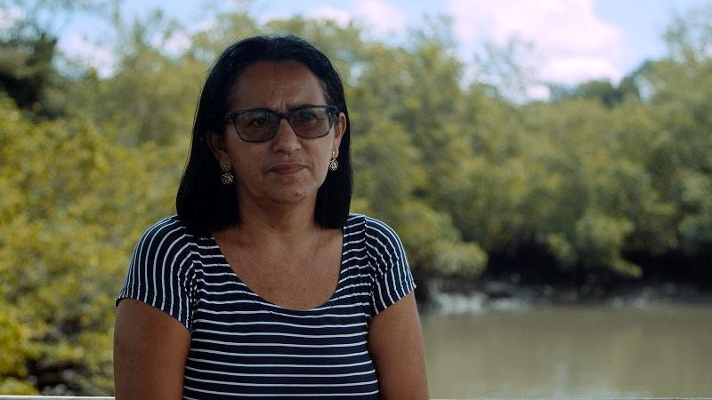 manguezais do Pará